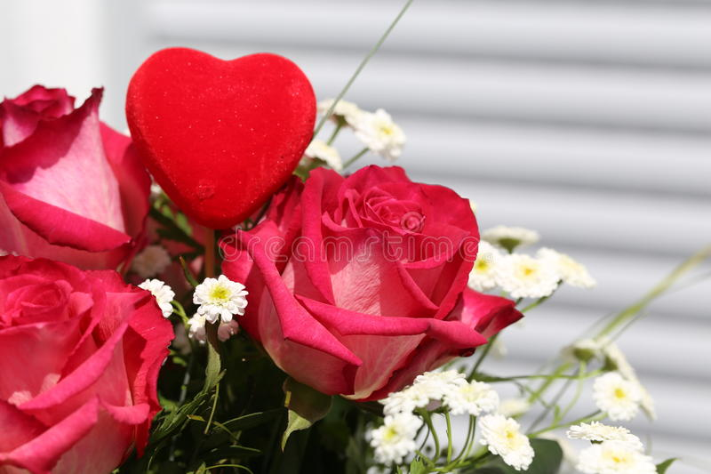 Download Beautiful roses stock illustration. Illustration of bush - 94691228