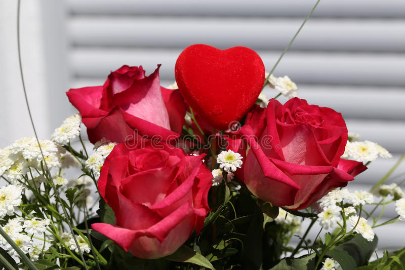 Download Beautiful roses stock illustration. Illustration of fresh - 94693007