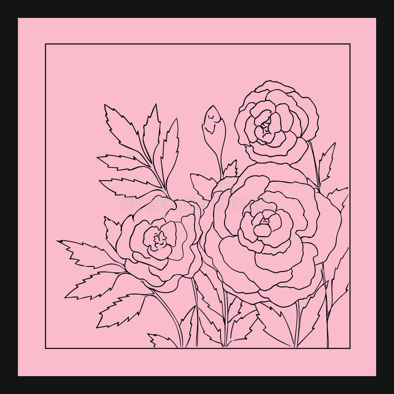 Beautiful roses isolated on soft pink background. Hand drawn vector illustration. vector illustration