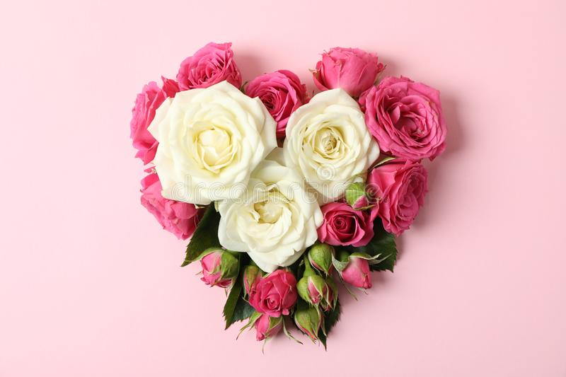 Beautiful roses in shape of heart. On color background royalty free stock images