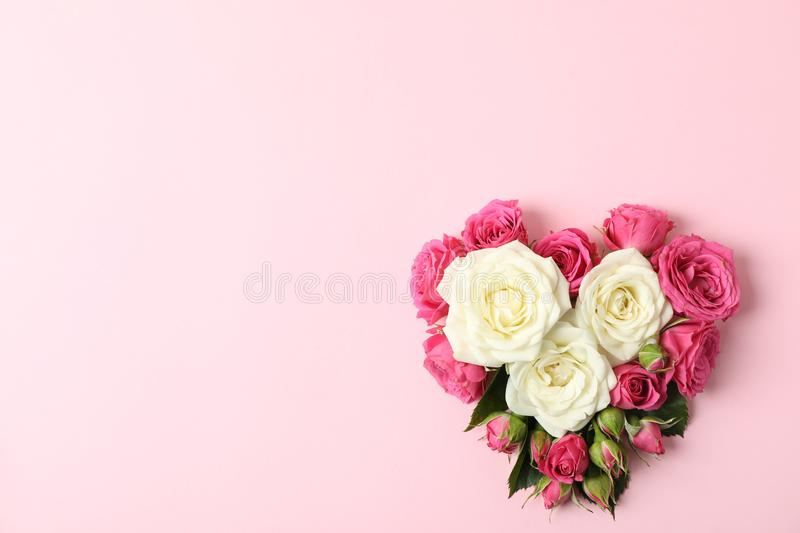 Beautiful roses in shape of heart on color background. Space for text stock photography