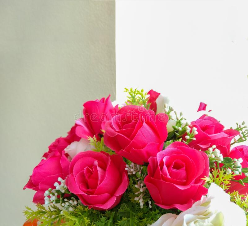 Beautiful roses in vase stock photography