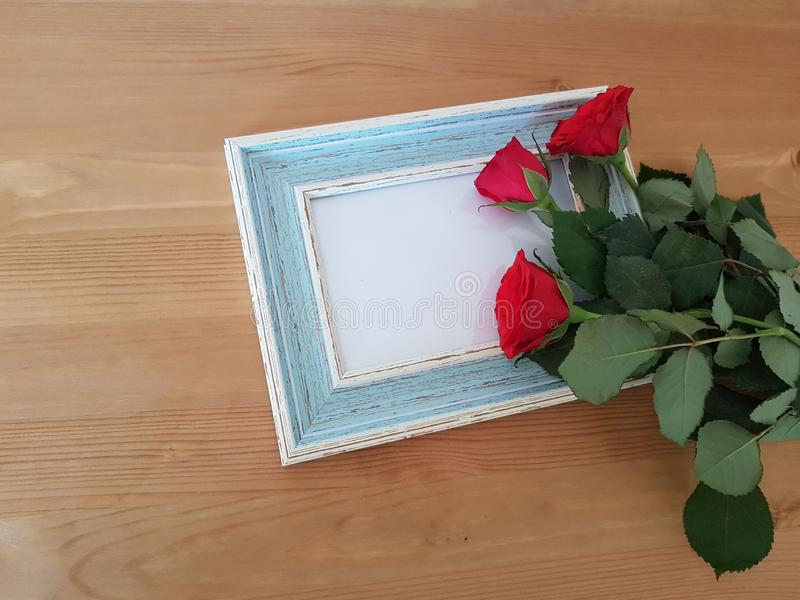 Beautiful Roses With A Vintage Frame royalty free stock photos