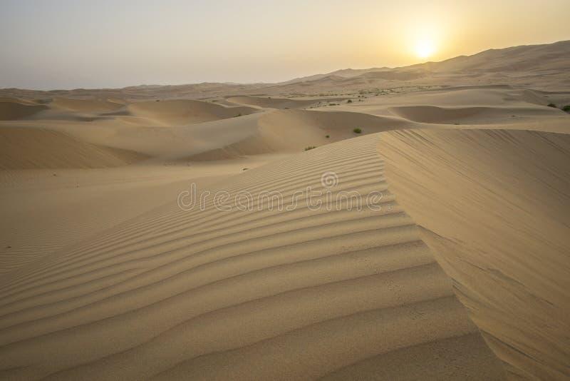 Beautiful Rub al Khali desert at sunrise royalty free stock photos