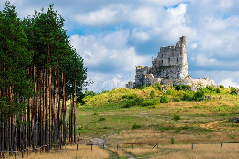 Beautiful ruined castle in Mirow royalty free stock photography