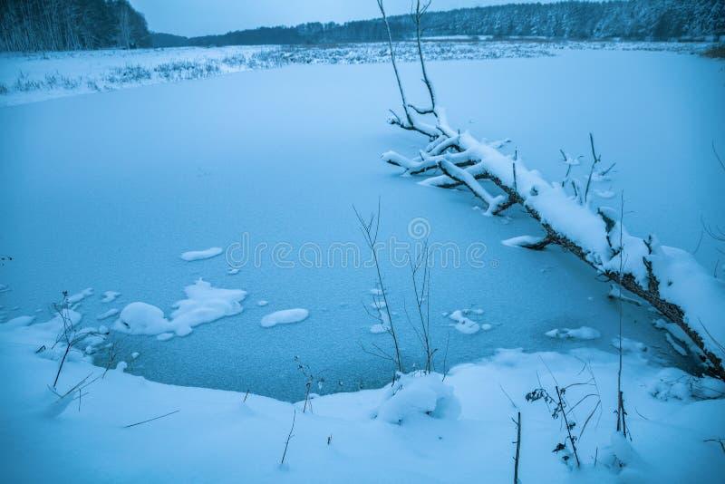 Fallen tree on a frozen lake. Beautiful rural winter landscape. Fallen tree on a frozen lake stock image