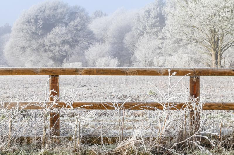 Rural winter snow scene and fence. Beautiful rural winter snow scene with two bar wooden fence and snow covered trees royalty free stock photography