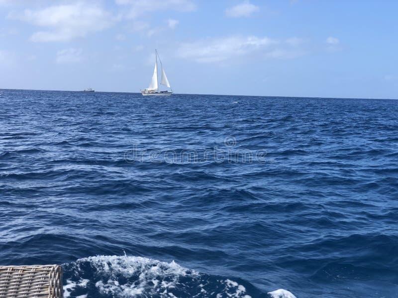 Beautiful sailboat view in the Honolulu Hawaii waters stock photos