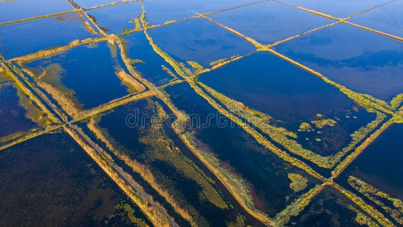 Beautiful salt marshes stock image