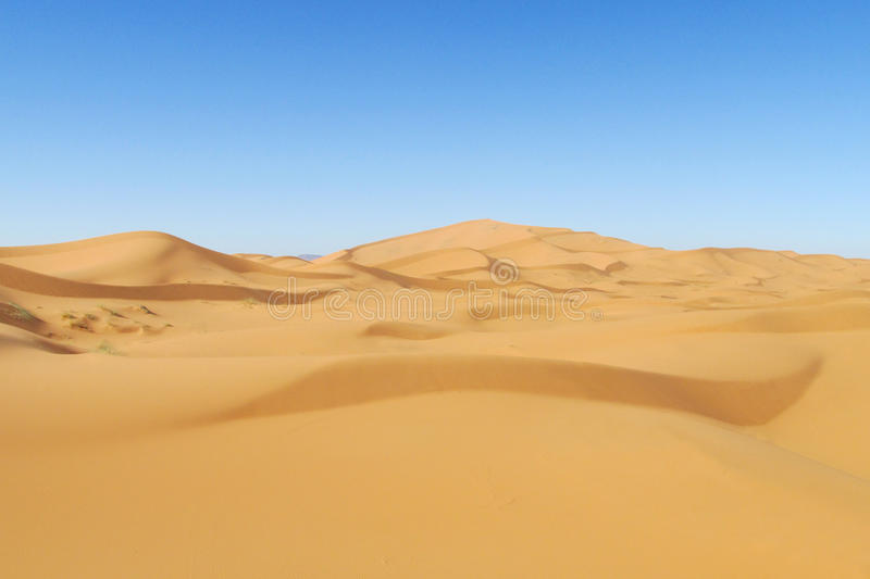 Beautiful sand desert Sahara dunes and blue sky. Beautiful sand desert dune panorama in Sahara. High sand dunes in the biggest world Sahara desert, Africa stock image