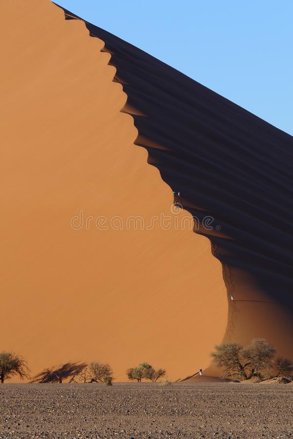 Beautiful sand dune of orange color against a bright blue sky, Namib desert, Namibia royalty free stock image