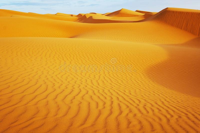 Beautiful sand dunes in the Sahara. Morocco, Africa stock images