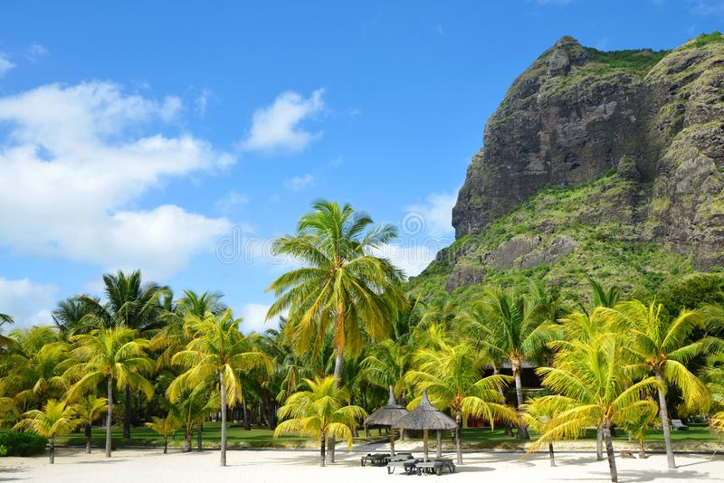Beautiful sandy beach with Le Morne Brabant mountain on the south of Mauritius island. stock photo
