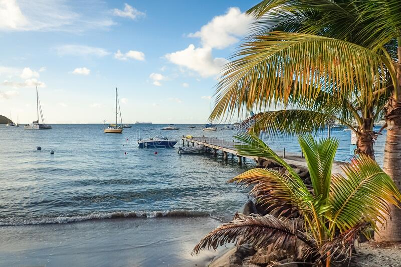 Beautiful sandy beach with palm trees and pier with boats and yachts at Anse a l'Ane beach, Martinique island, Caribbean sea, stock photography