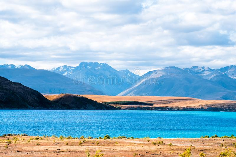 Beautiful scene of blue lake and yellow grassland with mount cook beside lake Tekapo before sunset. I. Beautiful scene of blue lake and yellow grassland with royalty free stock photo