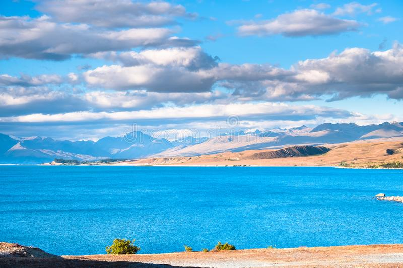 Beautiful scene of blue lake and yellow grassland with mount cook beside lake Tekapo before sunset. I. Beautiful scene of blue lake and yellow grassland with stock photos