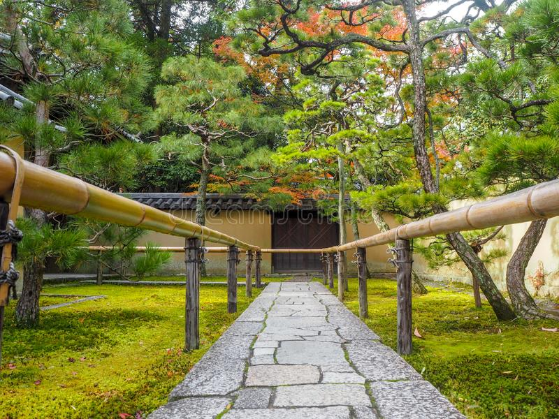 Beautiful scene of garden with fresh green trees and mossy ground in front of japanese temple. Kyoto, Japan royalty free stock images