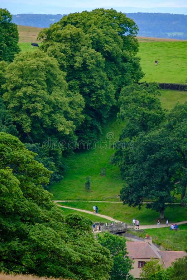 Beautiful scene of people strolling and grazing cows at Lyme Park, Peak District, Cheshire, UK. Beautiful scene of people strolling and grazing cows at Lyme Park royalty free stock photography