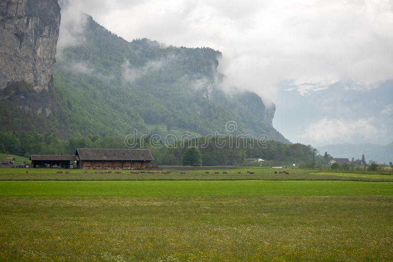 Beautiful scene of ranch in rural area of switzerland on mountain full of fresh green trees and cloud sky background. With copy space royalty free stock photography
