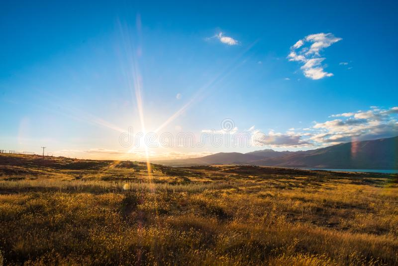 Beautiful scene of the yellow grassland mt cook and lake tekapo before sunset. I. Beautiful scene of the yellow grassland mt cook and lake tekapo before sunset royalty free stock image