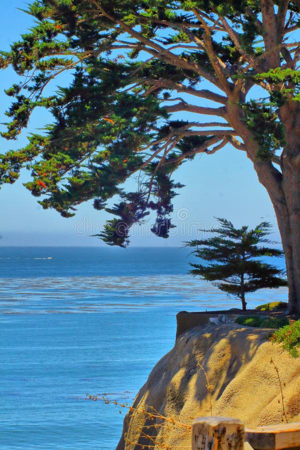 Beautiful scenery at the coast in central california royalty free stock image