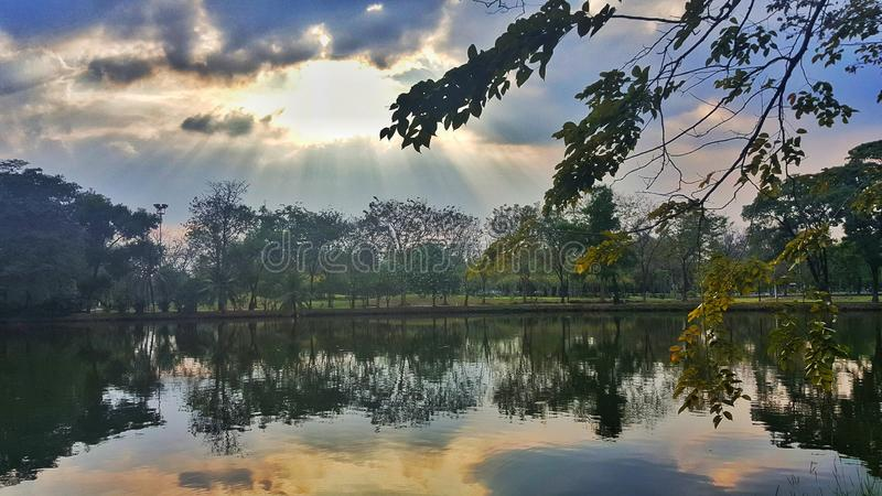 The beautiful scenery of the outdoor natural pond in the botanic garden park in the sunny day. Beautiful scenery  outdoor natural pond botanic garden park sunny royalty free stock photos