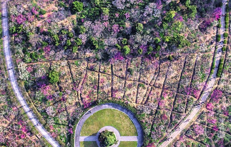 Aerial photography - Meihuashan Wanmu Meiyuan stock image