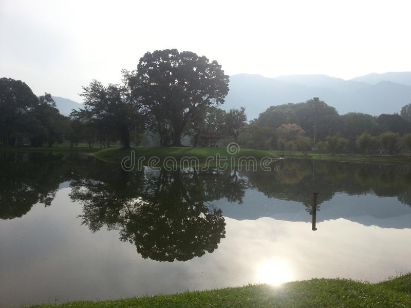 Beautiful scenery by the river in the park. royalty free stock image