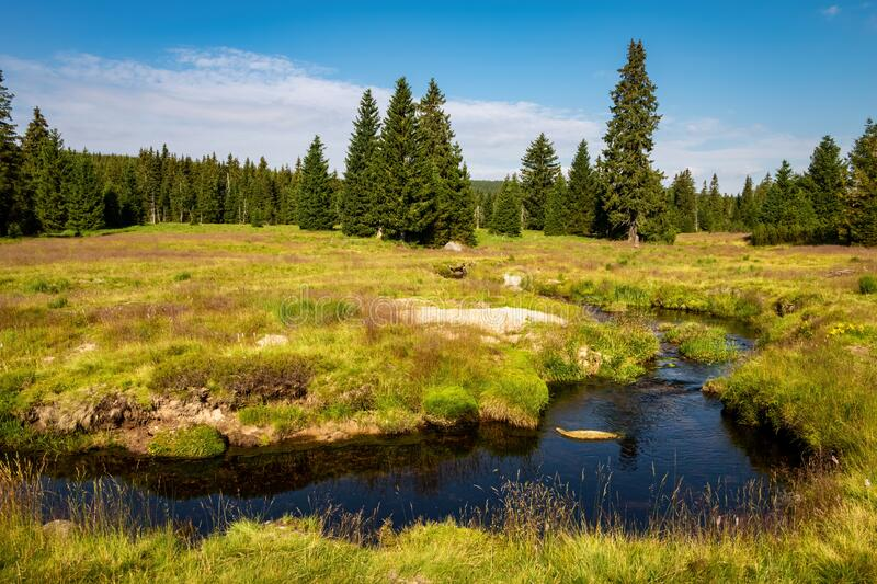 Beautiful scenery of summer landscape with creek meanders stock photo