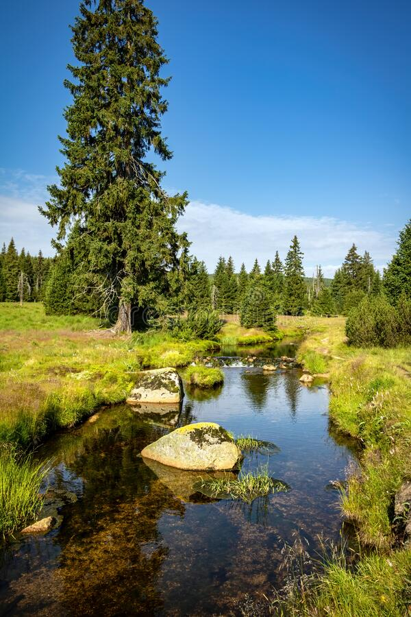 Beautiful scenery of summer landscape with creek meanders royalty free stock photo