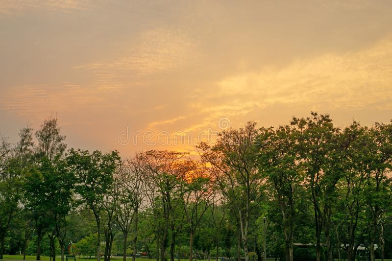Beautiful scenery sunset with glowing orange light painted on cloudy sky become to twilight dawn above the green leaves trees royalty free stock images