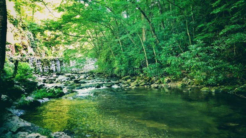Beautiful scenery while vacationing in Tennessee and Arkansas stock image