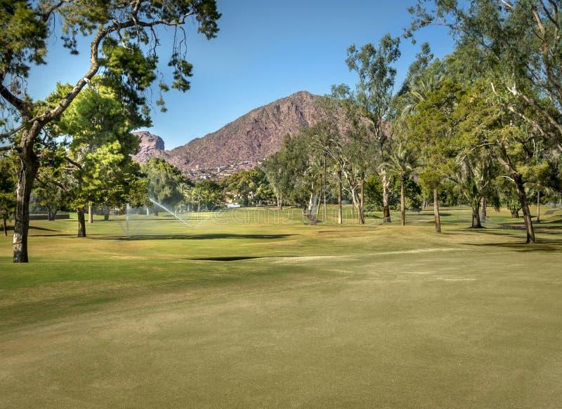 Beautiful scenic golf course in Phoenix, stock photos