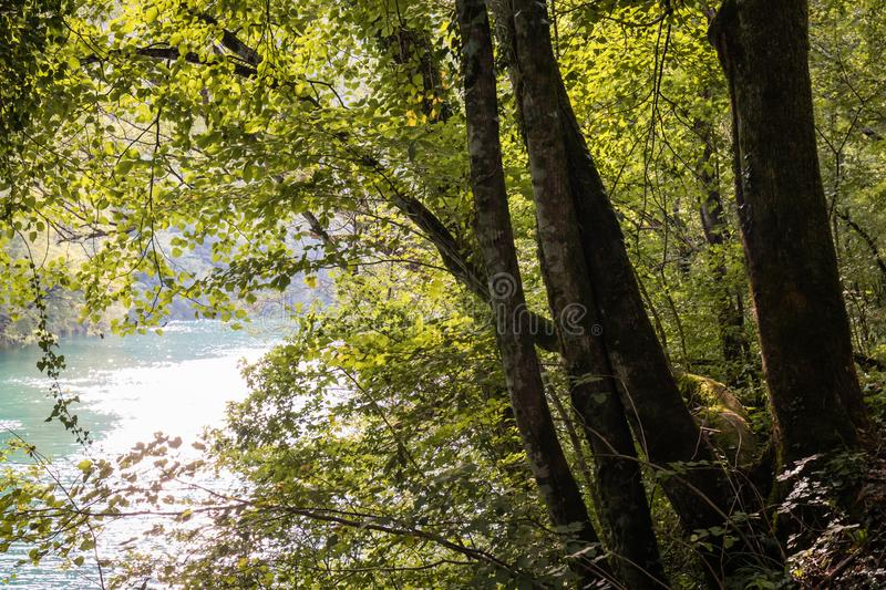 Beautiful scenic landscape view on river soca in slovenia. Beautiful scenic landscape view on river soca stock images