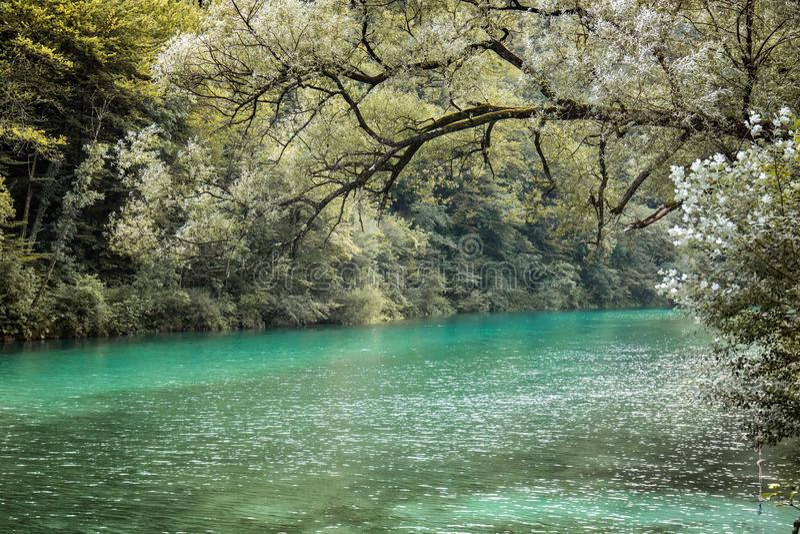 Beautiful scenic landscape view on river soca in slovenia. Beautiful scenic landscape view on river soca royalty free stock image