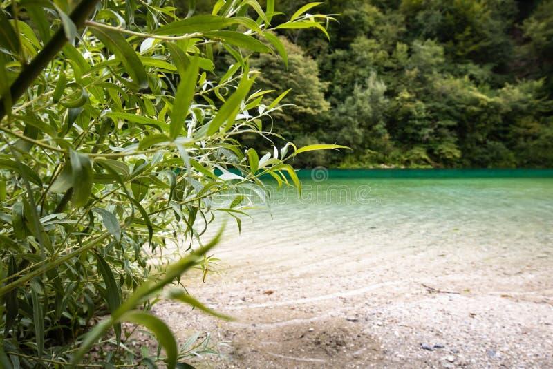 Beautiful scenic landscape view on river soca in slovenia. Beautiful scenic landscape view on river soca stock photography