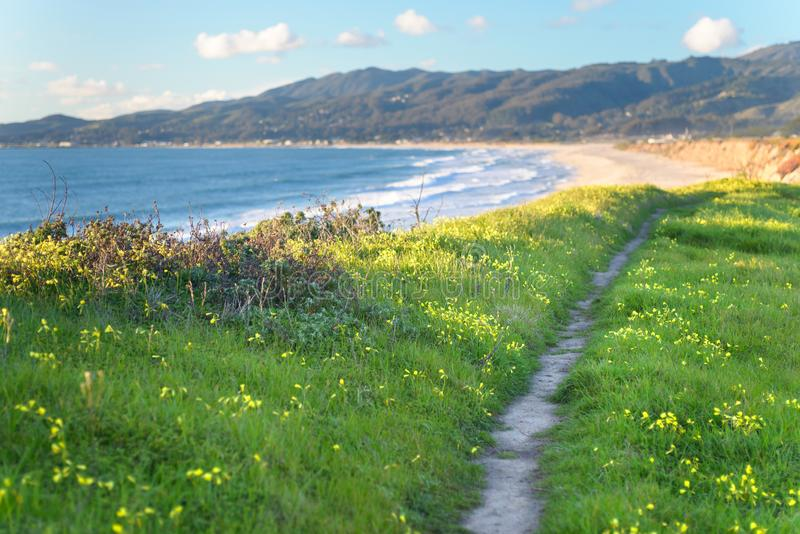 Beautiful scenic path on the green bluff above the ocean beach royalty free stock images
