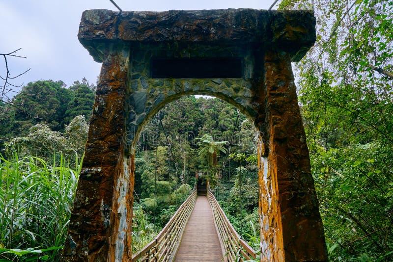 Beautiful scenics of Cuihong suspension bridge in Xitou Nature Education Area. At Nantou Lugu, Taiwan stock photo