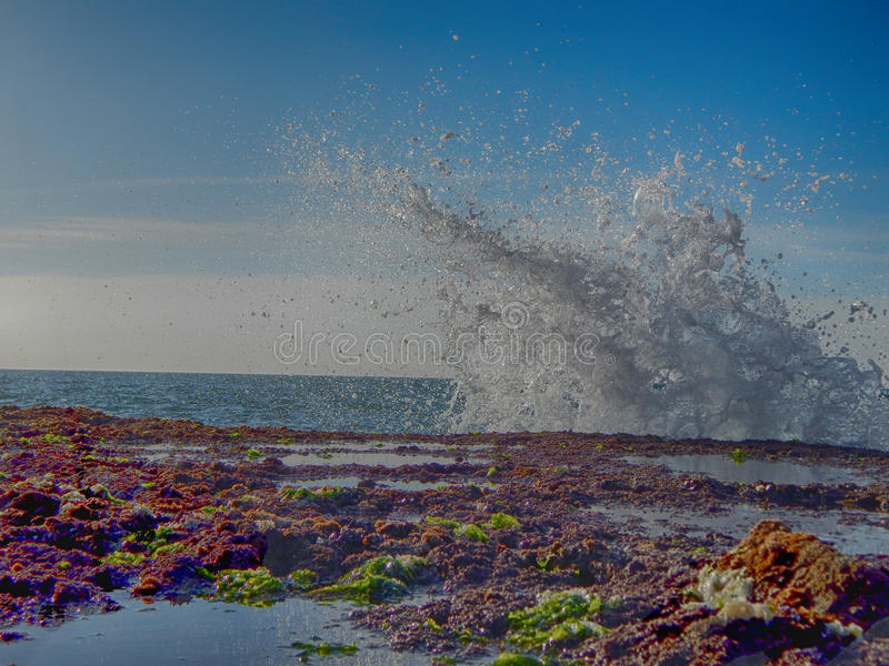 The beautiful sea stock images