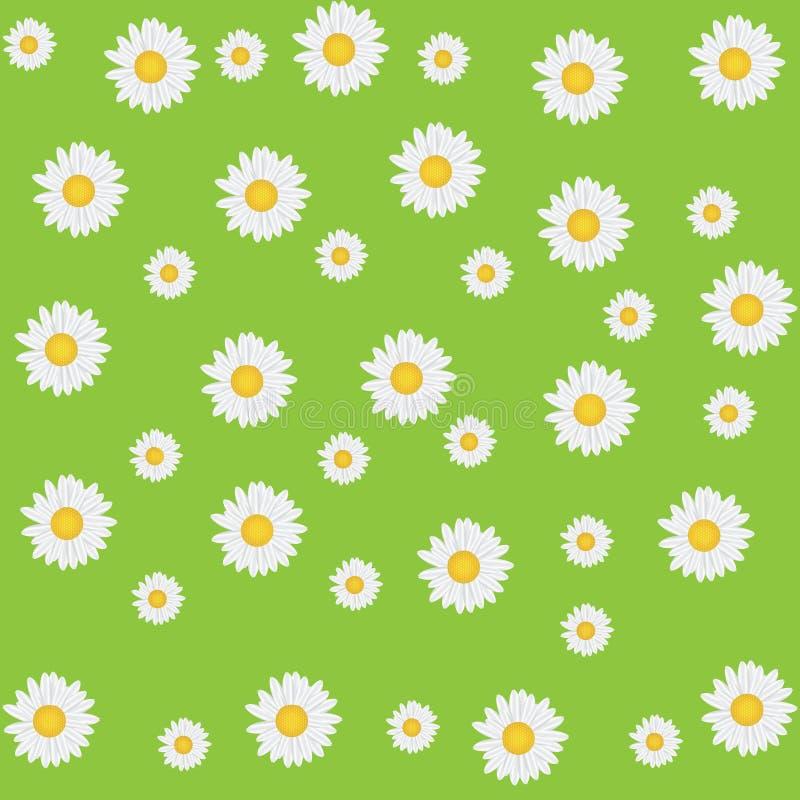 Beautiful Seamless Daisy Background Royalty Free Stock Photo