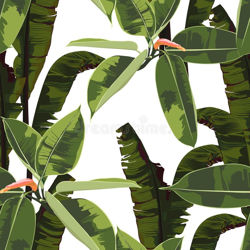Beautiful seamless floral pattern background with tropical bright ficus elastic and bananas leaves. royalty free illustration