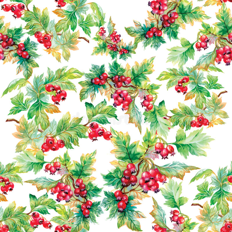 Beautiful seamless pattern in watercolor branches with rowan berries stock illustration
