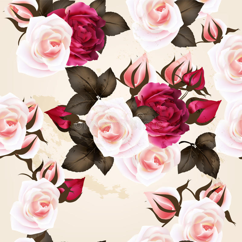 Beautiful seamless vector pattern with roses in vintage style stock illustration