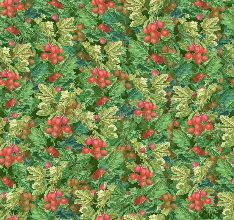 Beautiful seamlessl pattern - gooseberry green branches and red berries. stock illustration