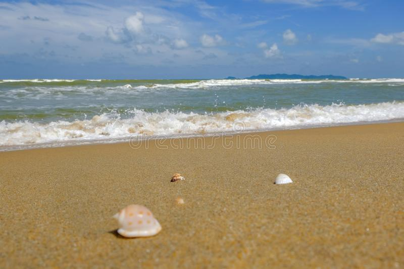 Beautiful seascape scenery, shell and soft wave under cloudy blue sky background stock image