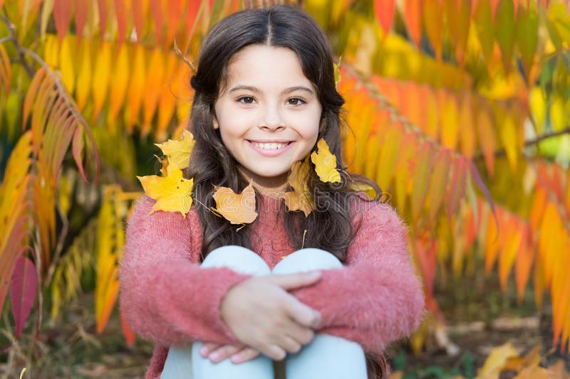 Beautiful season. Autumn nature. Happy small kid outdoors play with leaves. Sunny weekend. Girl sit relaxing in park. Sunny day. Autumn warm. Stylish smiling royalty free stock images