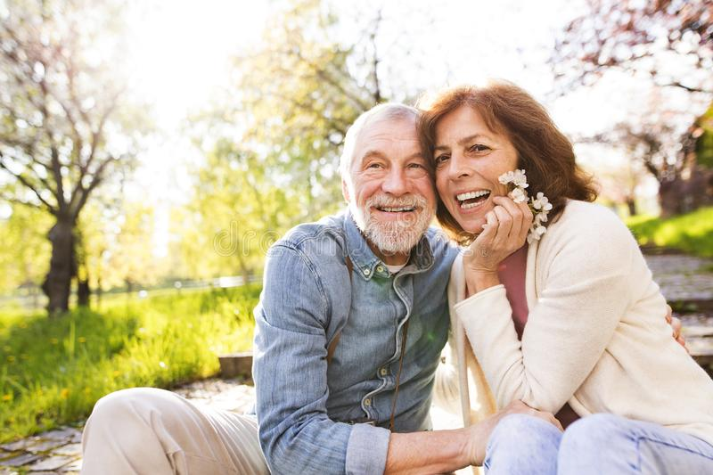 Beautiful senior couple in love outside in spring nature. Beautiful senior couple in love outside in spring nature, sitting on stairs, laughing royalty free stock photo