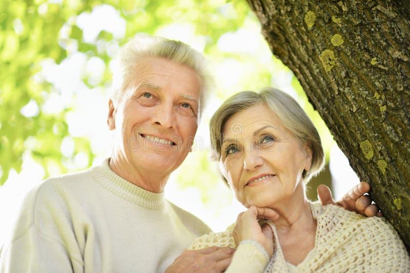 Beautiful senior couple posing in the park stock image