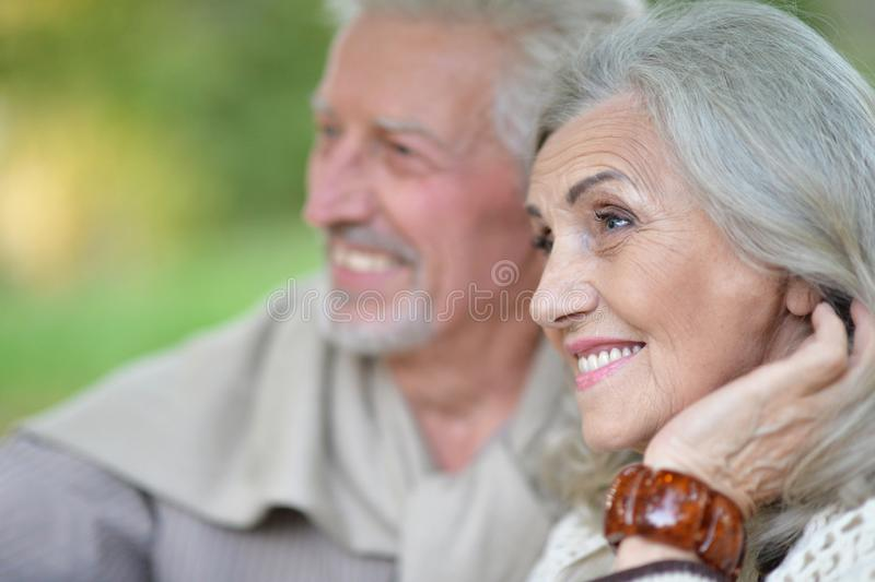Close up portrait of beautiful senior couple in the park royalty free stock image