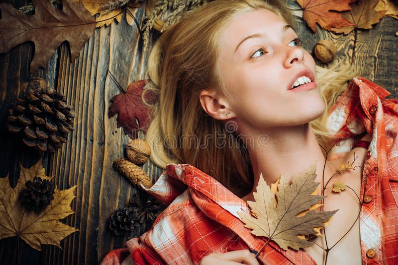 Beautiful sensual blonde playing with leaves. Background with autumn leaves. Happy young woman preparing for autumn stock photos